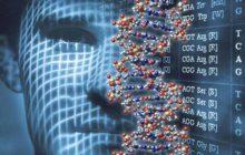 ДНК и лицо человека