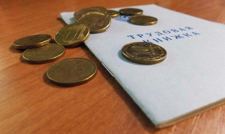 монеты на трудовой книжке