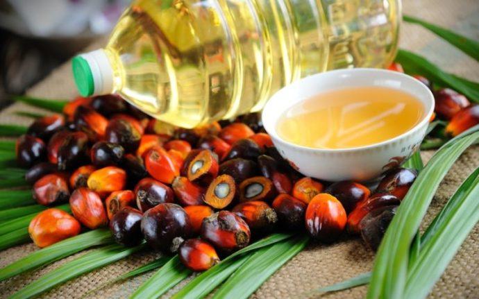 Пальмовое масло и ядра пальмы
