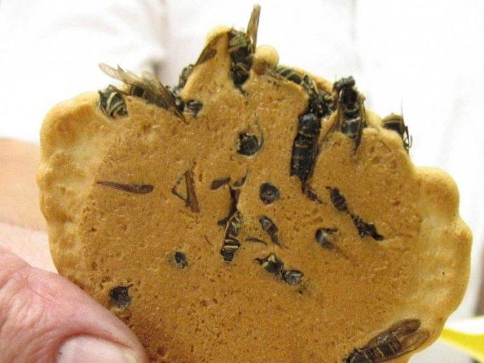 Печенье с осами