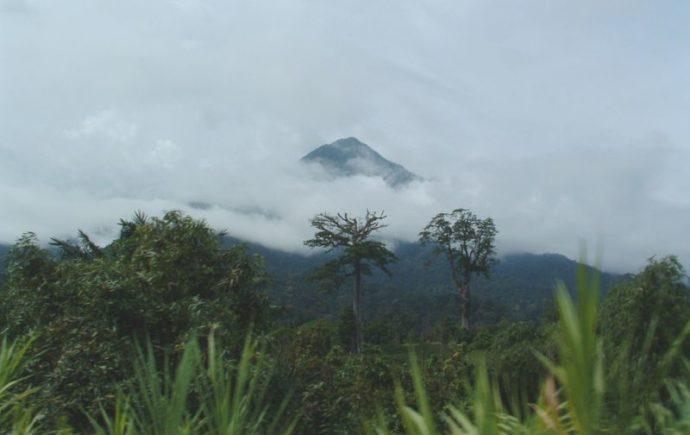 Гора в Камеруне