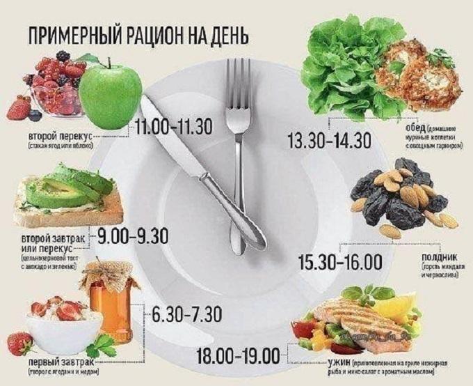 Инфографика - рацион на день