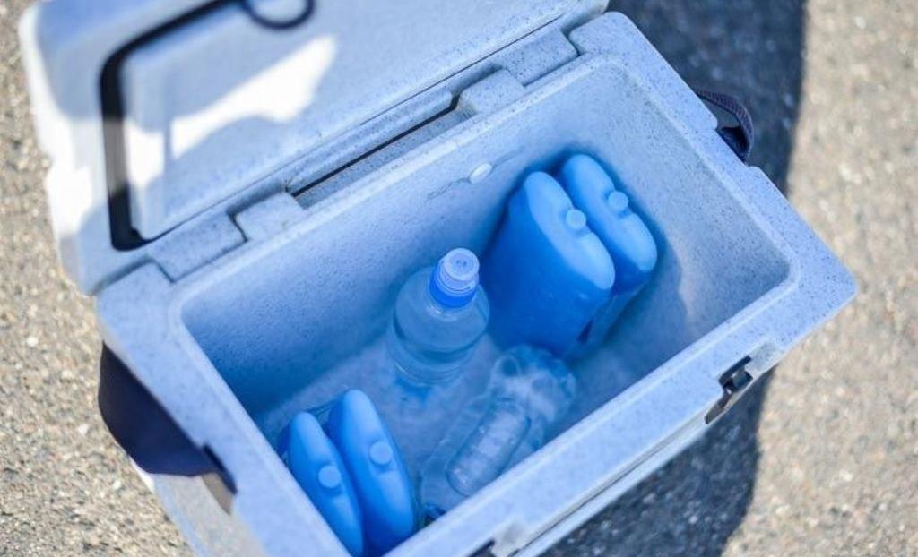 Аккумуляторы холода в сумке-холодильнике