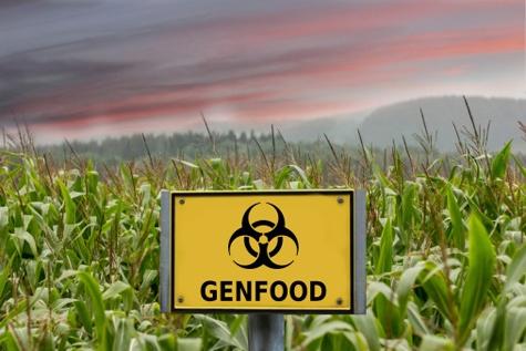 Знак опасности в поле