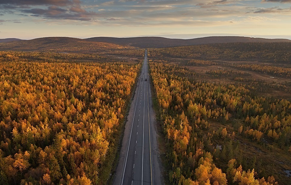 Дорога, пролегающая через осенний лес