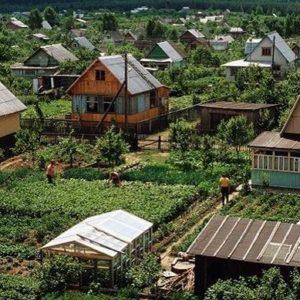 Советский дачный поселок